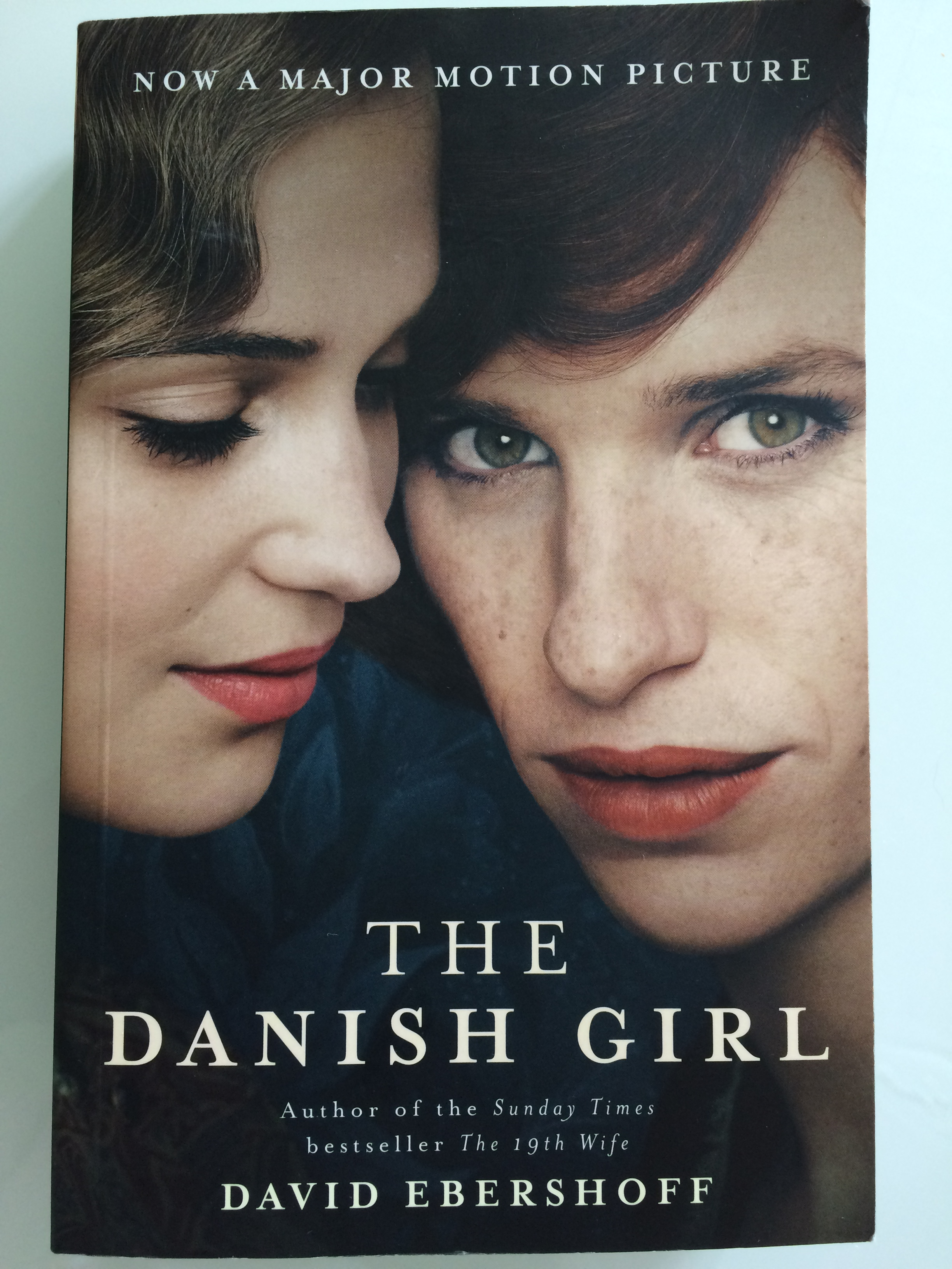 The Danish Girl img