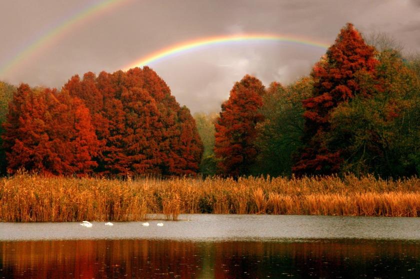 lake-1585556_1280